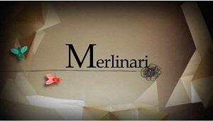 171120_merlinari_TV3