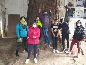 201201_Visita_sequoia