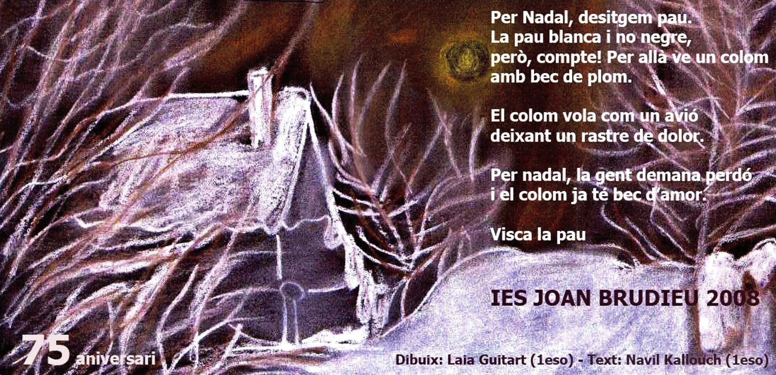 http://institutjoanbrudieu.cat/public/web_centre/html/documents/institut/curs/Nadala_2008_Institut_Joan_Brudieu.jpg